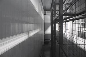 Фото сетчатого стеллажа в контейнере ХЛВЖ