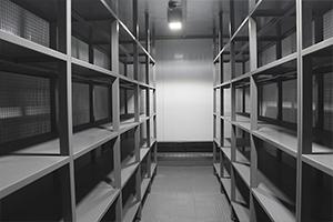 Сетчатые стеллажи в блок контейнере