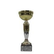Победитель конкурса - Лучшая компания Дона 2013 года